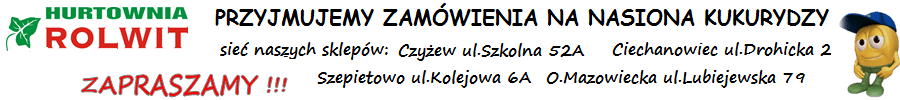 Rolwit